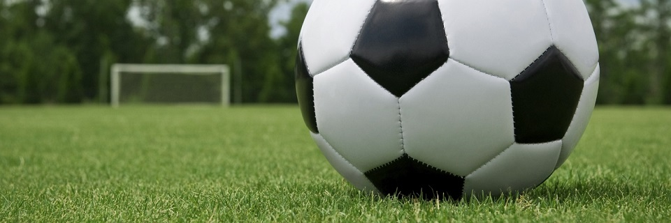 Turning Plain Ground Spaces To Multipurpose Game Arenas  With Artificial Turf